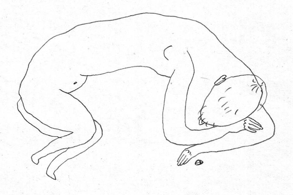 Láng Orsolya rajza